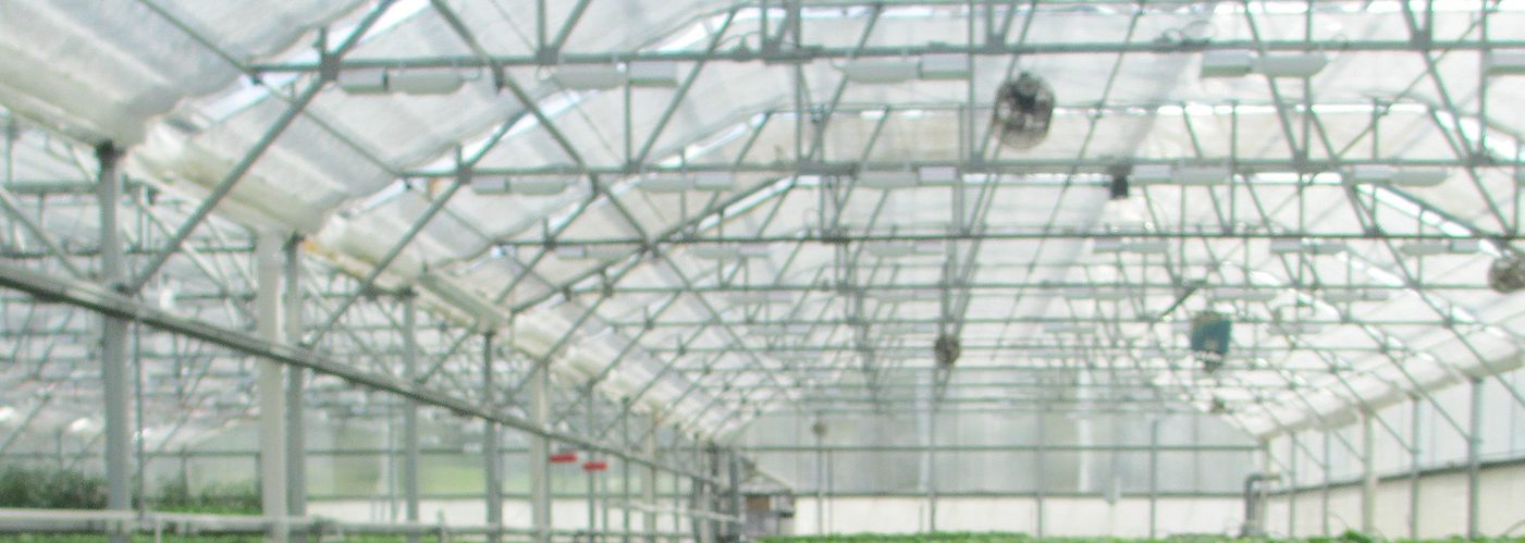 The Solution Lies In Automated- Controlled-Environment Agriculture